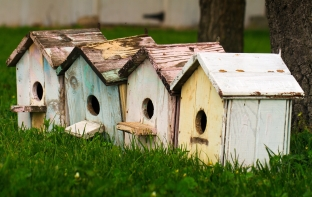 unsplash-bird house